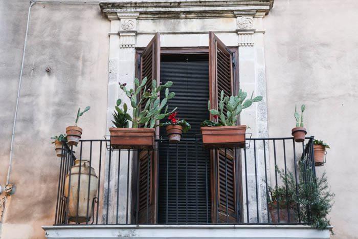 Sicily-Cacti